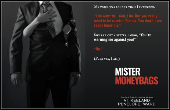 Mister Teaser